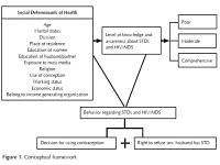 Social determinants of awareness and behavior regarding STDs