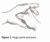 The effect of Hugo point pressure on postpartum pain in multiparous women
