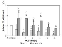 Sulodexide increases mRNA expression of glutathione-related genes in human umbilical endothelial cells exposed to oxygen-glucose deprivation